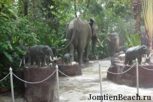 шоу слонов паттайя