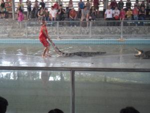 крокодиловая ферма и парк камней в таиланде